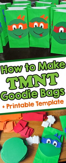 homemade teenage mutant ninja turtle goodie bags
