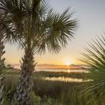 Gulf Country Florida