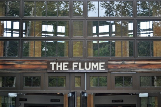the flume