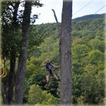 Loon Mountain Zip Lining