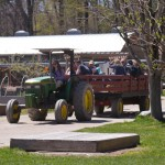 Drumlin Farm Tractor Ride