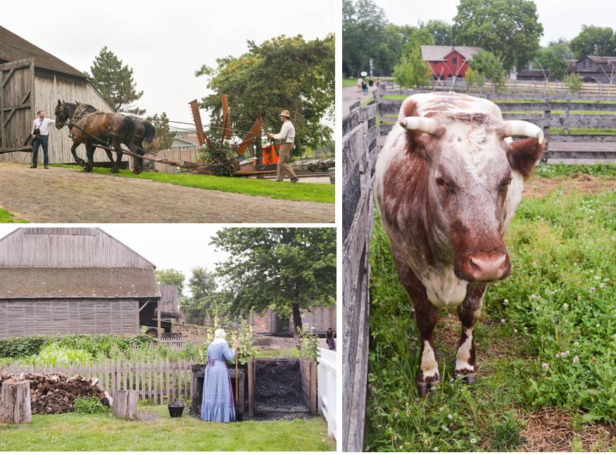 farm at greenfield village