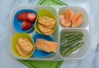 Kids School Lunch Box Ideas