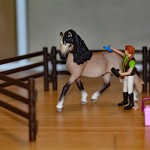 Schleich Horse Club collection Horse Care Set