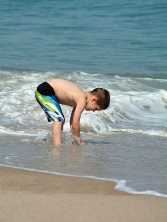 Favorite Things to Do in Cape Cod with Kids