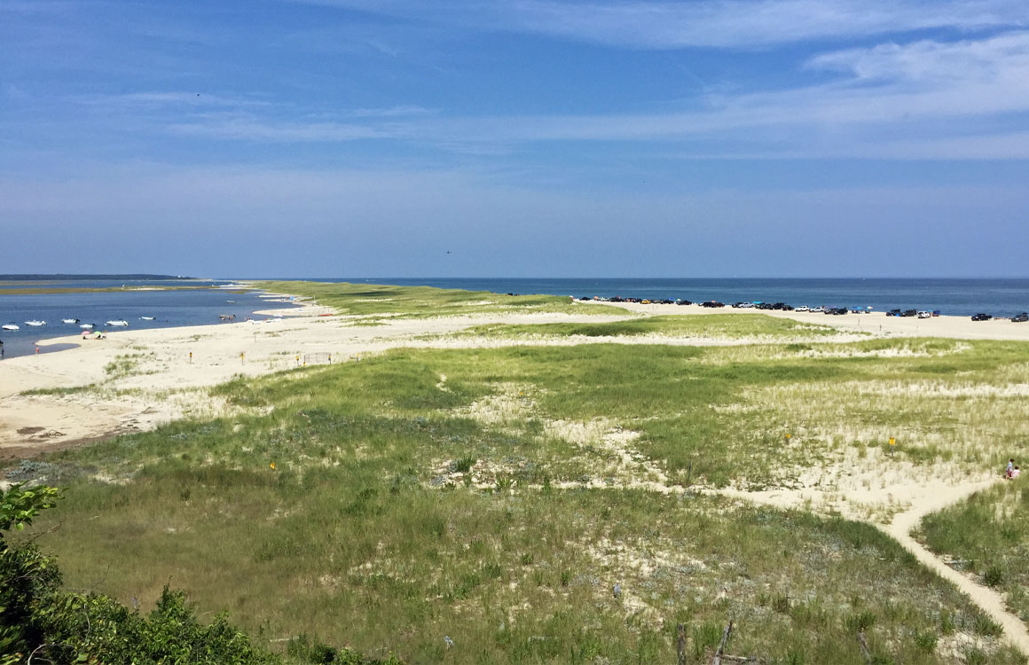 Our Favorite Things To Do In Cape Cod With Kids Mommy S