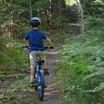 Kent MT20 Mountain Bike Review