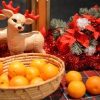 Celebrate The Holidays with Wonderful Halos