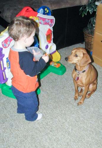 Dogs and Kids
