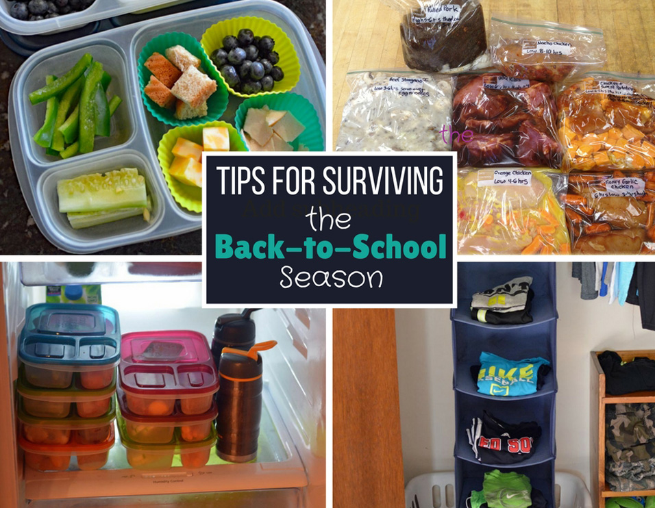 5 Tips for Surviving the Back-to-School Season