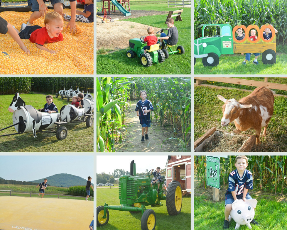 Sharman Farm Fall Activities