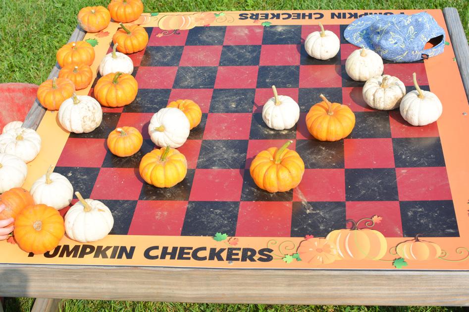 Sherman Farm Pumpkin Checkers
