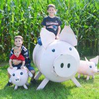 Sherman Farm Conway NH