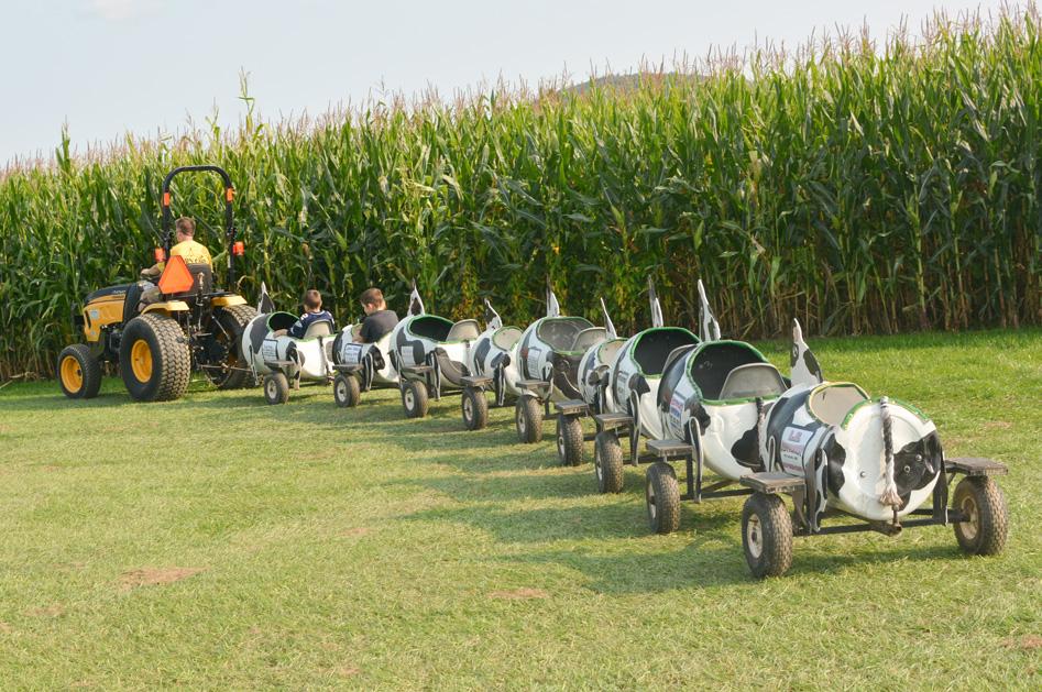 Sherman Farm tractor ride