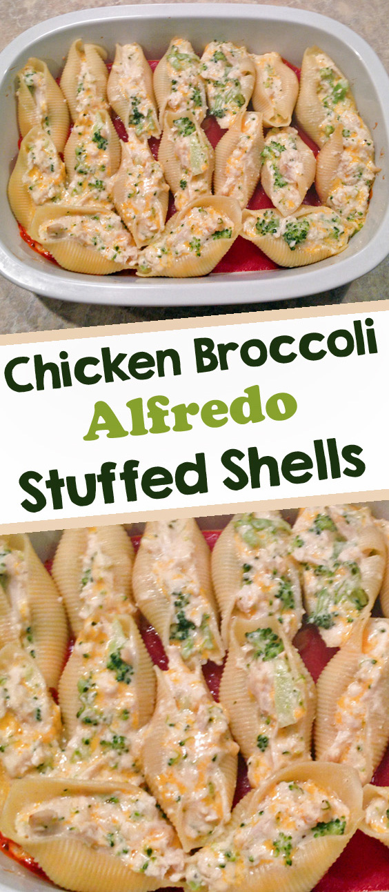 chicken broccoli stuffed shells