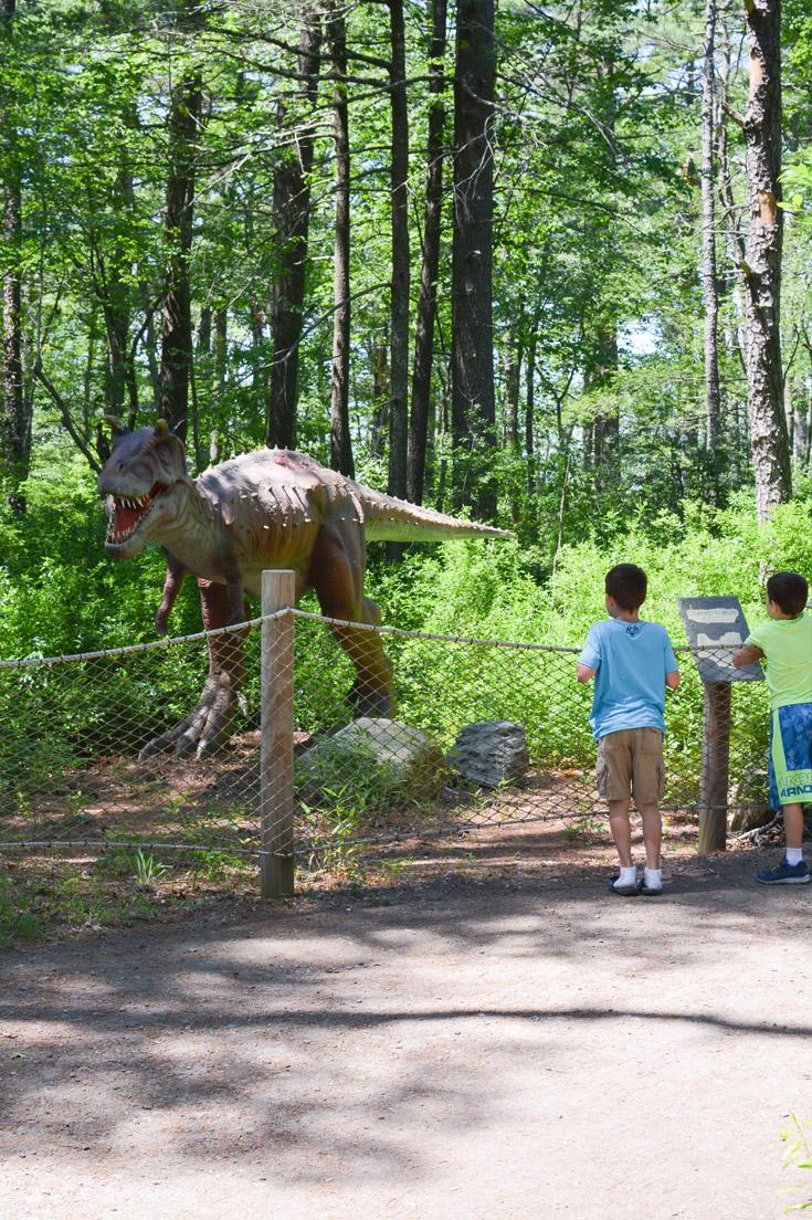 Dino Land Edaville Family Theme Park