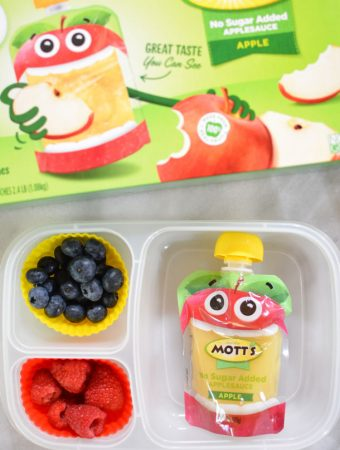 motts clear applesauce pouches