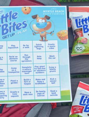 Entenmann's Little Bites Get Up & Play Activity